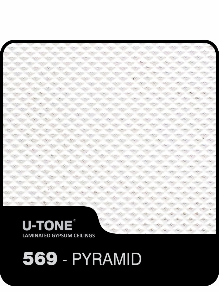 false-ceiling-2-by-2-grid-tiles-6.jpeg